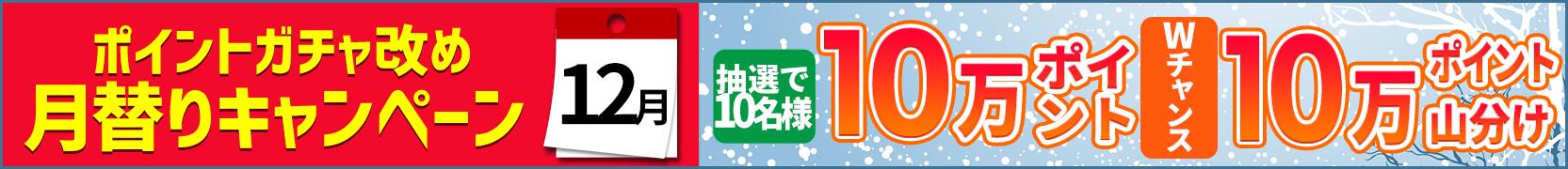 【毎月11日開催】月替りキャンペーン(12月)