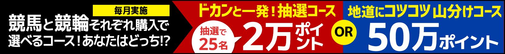 競馬&競輪 共同キャンペーン(2019年2月)