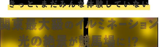 関東最大級のイルミネーション光の絶景が競馬場に!?