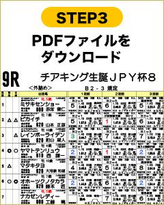 STEP3 PDFファイルをダウンロード