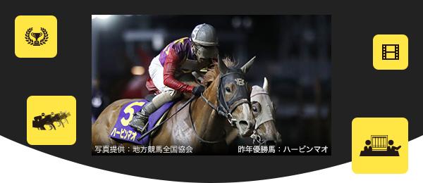 関東 オークス 2019